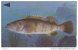 BAHRAIN(GPT) - Fish Of Bahrain/Grouper, CN : 40BAHJ/B(normal 0), Used