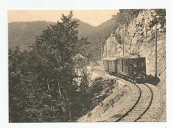 Suisse - Vaud Train Pour Nyon Près De St Cergue Au Début De L'exploitation  Cpm Repro - VD Vaud