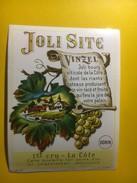 3727- Suisse Vaud Joli Site Dorin Vinzel - Etiquettes