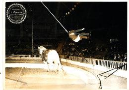 PH 57-  PHOTO -CIRQUE - FESTIVAL MUNDIAL DEL CIRCO  BARCELONA  (format :18,00 Cm X 13,00 Cm) - Fotos