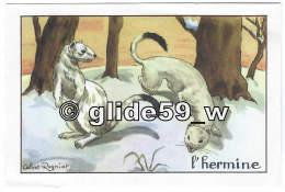 HERMINE - Image Scolaire Editions Educatives Paris - Série A (Calvet-Rogniat Illustrateur) - Animals