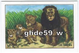 LION - Image Scolaire Editions Educatives Paris - Série A (Calvet-Rogniat Illustrateur) - Animales
