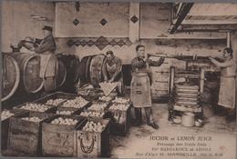 CPA 13 MARSEILLE JUCIOR Et LEMON Juice Pressage Fruits Ets Barbaroux Et Arioli Rue D'Alger TOP - Old Professions