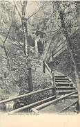 A-17-4710 :  ISLE OF WIGHT. SHANKLIN CHINE. VALENTINES SERIES - Angleterre