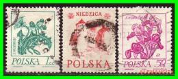 POLONIA - POCZTA - POLSKA -  SELLOS  USADOS , SIN DEFECTOS  - AÑO  1980 - 1944-.... República