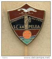 Distintivi Calcio Ampelea Isola D'istria Pins Gadget Soccer Football Distinguès Pin - Calcio
