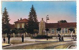 THAON LES VOSGES LE MONUMENT ARMAND LEDERLIN  ARCHITECTE GUINGOT  ****     A  SAISIR ****** - Thaon Les Vosges