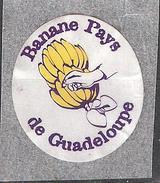 Vignette Etiquette Autocollante BANANE PAYS De  Guadeloupe  / Banana Platano ; Illustrée Main Et Régime  , TB - Fruits & Vegetables