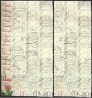# Germania Federale 2003 100 Pz. Fiori - Rosa - N. Mi. 2321 - [7] Repubblica Federale