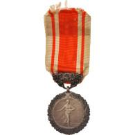 France, Medal Of Honour For Public Hygiene, Politics, Society, War, Medal, XXth - Army & War