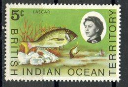British Indian Ocean Territory1968 5 Cent  Lascar Issue #16  MH - British Indian Ocean Territory (BIOT)