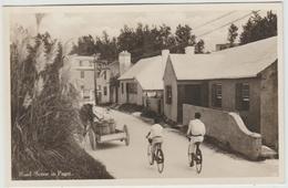 ROAD SCENE IN PAGET (ANTILLES / BERMUDES) - Bermudes
