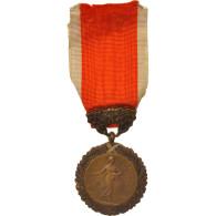 France, Medal Of Honour For Public Hygiene, Politics, Society, War, Medal, XXth - Militari