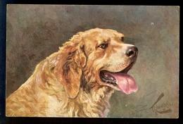 G. Kowalsky - St. Bernhardiner Hund / T.S.N. - R.M. No. 230 / Postcard Not Circulated, 2 Scans - Künstlerkarten