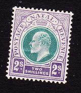 Natal, Scott #91, Mint Hinged, King Edward VII, Issued 1902 - Natal (1857-1909)