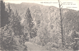 FR66 LE CANIGOU - CANIGO - Associcio Protectora  148 - Cami Forestal De La Vall De Cadi - Belle - Francia