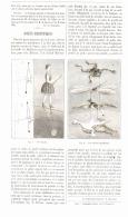 JOUETS SCIENTIFIQUES ( MADEMOISELLE BLONDIN /  LES ANIMAUX EQUILIBRISTES )  1893 - Unclassified