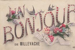 19 / UNE BONJOUR DE MILLEVACHE   //////    REF MARS 17  / N° 2602 - Autres Communes