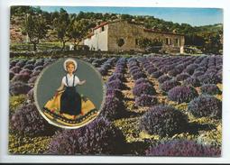 Carte Parfumée Poupée Brodée Vallazur - Poupée Provençale Traces De Pliures - Grasse Et Eze Village - Brodées