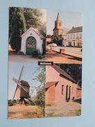 Groeten Uit WOLFSDONK / Anno 1994 ( Zie Foto Details ) !! - Aarschot