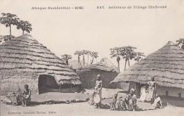 Afrique - Guinée - AOF - Intérieur Village Djallonké - Guinée
