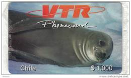 CHILE - Seal, VTR Prepaid Card $1000, Tirage 1000, Mint - Chile