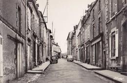 LA CHATAIGNERAIE. -  Rue Du Palais. CPSM 9 X14 - La Chataigneraie