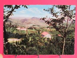 Italie - Colli Euganei - Torreglia Alta Col Rifugio Di Rua E Villa Immacolata - Joli Timbre - 1955 - Scans Recto-verso - Venezia (Venice)