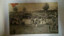 AVIGNON CHAMP DE COURSES VUE D ENSEMBLE DES TRIBUNES PARI MUTUEL 1906 ANIMÉE - France
