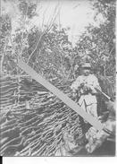 1915 Soldat Français Du 314ème R.I à L'observation Dans Une Tranchée Gabionnée 1 Photo 14-18 1914-1918 Ww1 1wk - War, Military