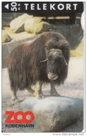 DENMARK - Zoo Copenhagen/Buffalo, Tirage 3500, 04/95, Used - Schede Telefoniche