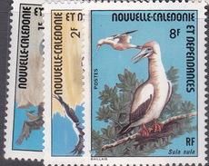New Caledonia SG 561-63 1976 Ocean Birds MNH - Unused Stamps