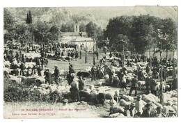CPA 1912 BIEN ANIMEE AX LES THERMES FOIRAIL DES MOUTONS - Ax Les Thermes