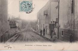 Mirecourt - L'Avenue Jeanne D'Arc - Mirecourt