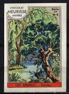 Meurisse - Ca 1930 - 17 - Les Arbres, Trees - 6 - Saules, Willows - Chocolate