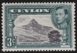 Ceylon   .       SG     .    387   P  13 1/2  X  11 1/2      .        *    .     Ongebruikt   .    /    .   Mint-hinged - Ceylon (...-1947)