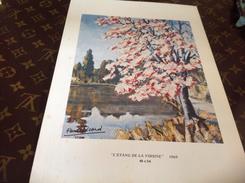 Dessin Paul Ricard  L étang De La Voisine  Arbre 🌲  Sur Carton - Steendruk
