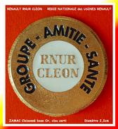SUPER PIN´S RENAULT CLEON : RNUR (Régie Nationale Des Usines Renault) Groupe Amitié-Santé Interne à RENAULT,Diamètre 2,2 - Renault