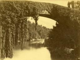 France Pont De Betharram Gave De Pau Pyrénées Ancienne Photo 1870
