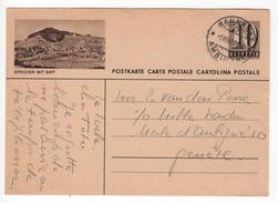 Entier Postal Illustré De 10 Cts Speicher Mit Birt. Circulé En 1949 - Suisse