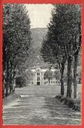 26 - MONTBRUN LES BAINS - Parc De L'ancien établissement De Bains - Accueil Du Casino - éd CIM - Non Classés