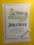 3731 - Joli Site Dorin De Vinzel Suisse Vaud - Etiquettes