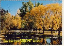BRIGHT, Victoria, Picnic Area Ans Swimming Pool  In Centenary Park ... Nice Stamp - Australia