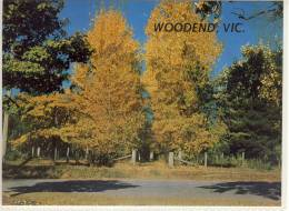 WOODEND, Victoria - Autumn Splendour,  Rose Series Colorview , ... Nice Stamp - Australia