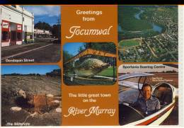 TOCUMWAL, N.S.W. On The Murray River, Multi View W. Ingo Renner, World Gliding Champion, Air View,   Nice Stamp - Australia