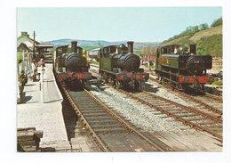 Lotrain - Dart Valley Railway Locomotives At Buckfastleigh - Eisenbahnen