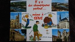 CPSM SENS YONNE IL Y A DES CHAMPIGNONS PARTOUT MEME A SENS - Sens