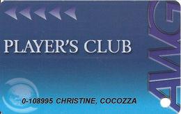 Atlantis World Casino - St. Marteen - AWG Guest Card / Casino Slot Card - Reverse Text 28mm Top To Bottom