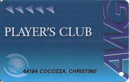Atlantis World Casino - St. Marteen - AWG Guest Card / Casino Slot Card - Reverse Text 26mm Top To Bottom