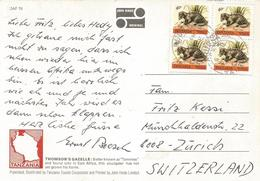 Tanzania 1982 Arusha Mongoose Viewcard - Tanzania (1964-...)